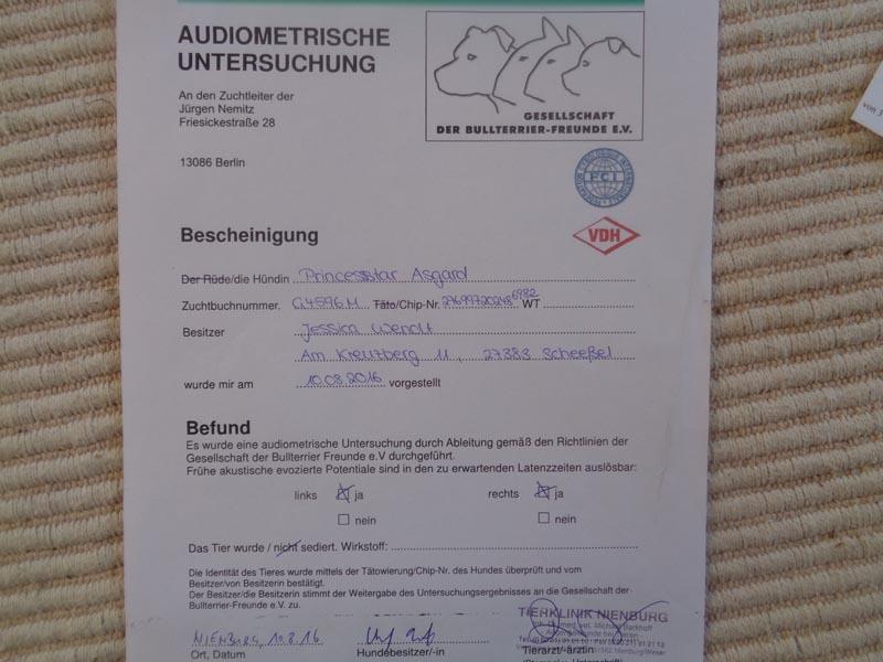 Audiometrische Untersuchung